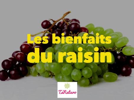 Les bienfaits du raisin