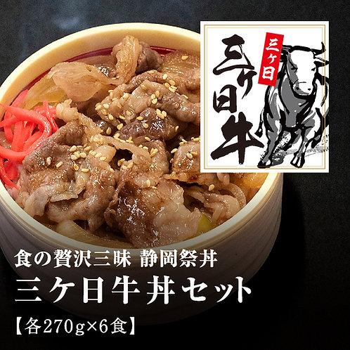 静岡祭丼「三ケ日牛丼セット」