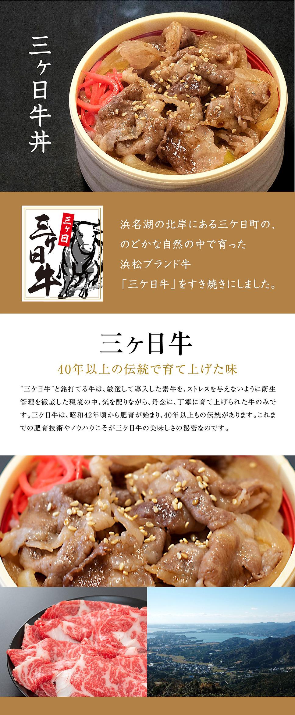 三ヶ日牛「三ヶ日牛丼」
