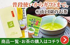 banner_ocha_02.jpg