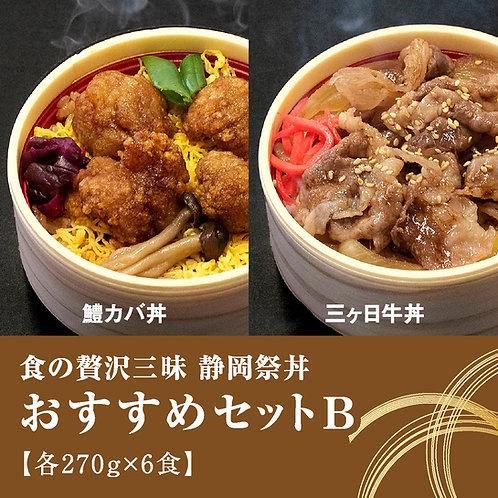 静岡祭丼「おすすめセットB」