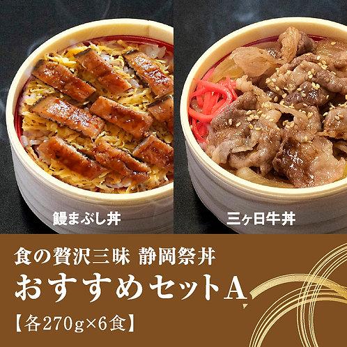 静岡祭丼「おすすめセットA」