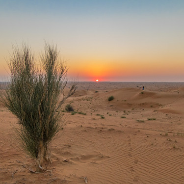 Wüstenzeit