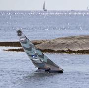 3x1 Carbon One Design RC Yacht