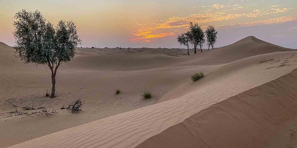 Osterandacht in der Wüste - 9:00 Uhr