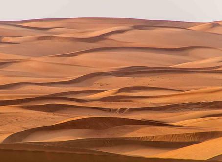 The Desert and the Wüstenschiff