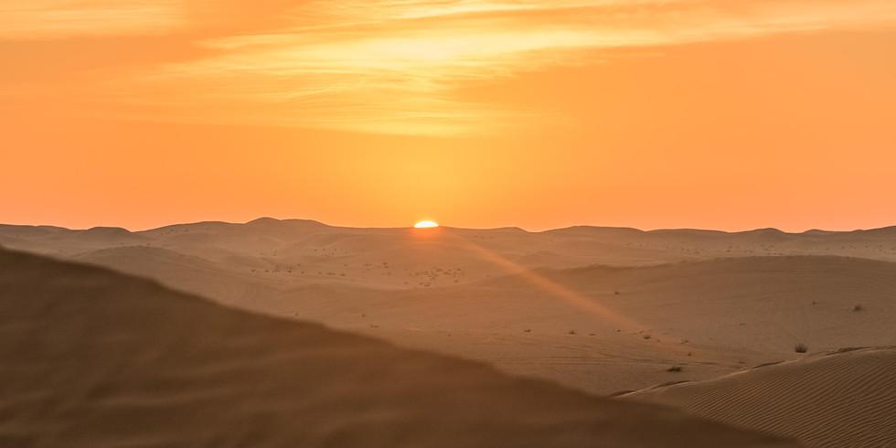 WüstenOasenzeit im Februar in Dubai