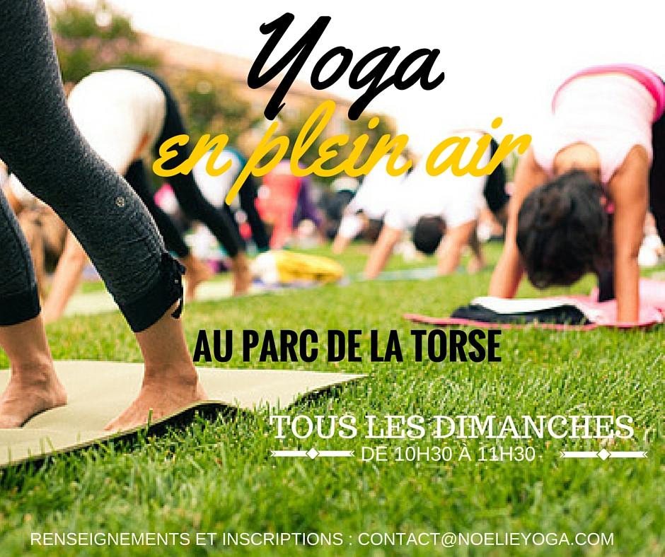Yoga au Parc de la Torse