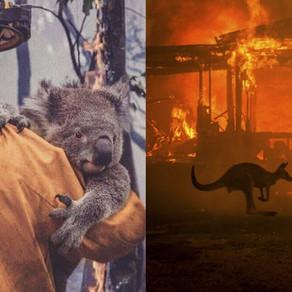The devastating effects of Anthropogenic climate change in AUSTRALIA. #SaveAustralia