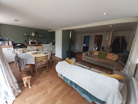 Cosy B&B stay for your dogs to enjoy 🐾