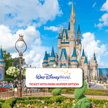 DisneyWorldParkTicket.png
