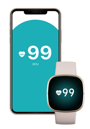echo fitbit.png