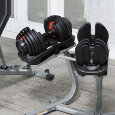 BowFlex Adjustable Dumbbells.png