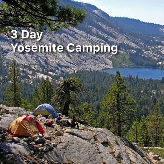 YosemiteCamping.png