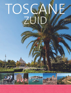 Cover_Toscane_Zuid_palmboom2