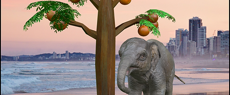 12.9″ iPadPro_elephant_3x.png
