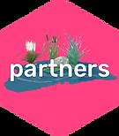 Krikey_partners.png