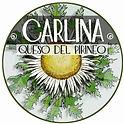 ETIQUETA-CARLINA-LIMPIA (1).jpg