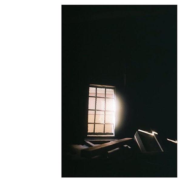 Lisa Kato.jpg