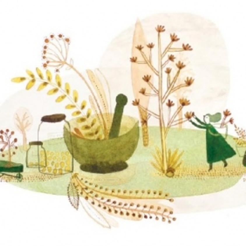 Cuisine des plantes sauvages de printemps (bis)