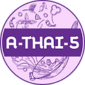 A-Thai-5 Restaurant, Home Delivery & Takeaway Blackwood Street Mitchelton Brisbane