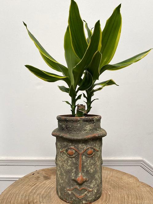 Rustic face vase