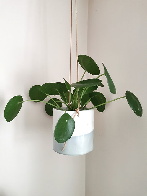 Small Dip Hanging Planter