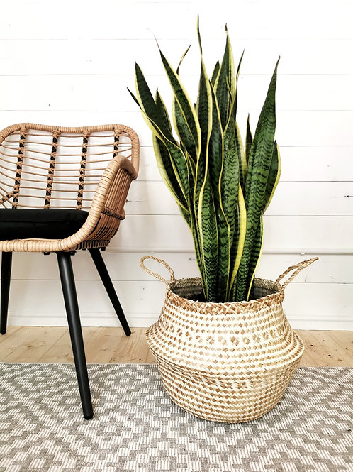 Extra Large Seagrass Tribal Basket