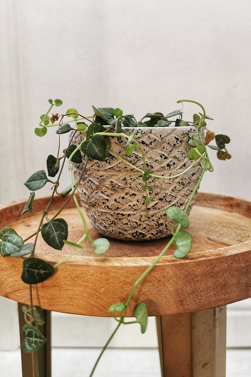 Diamond Textured Planter - Small