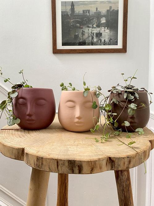 Small Face Pots