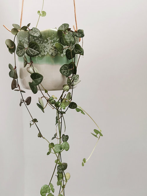 Small Wave Hanging Planter
