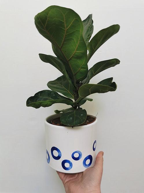 Forio Orb Planter