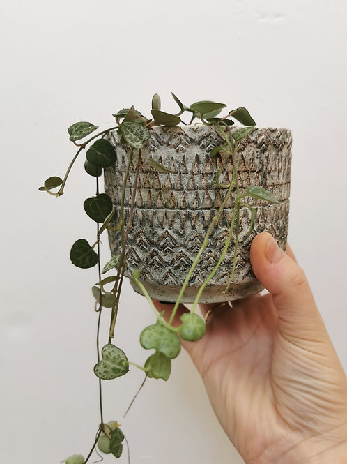 Textured Planter - Small