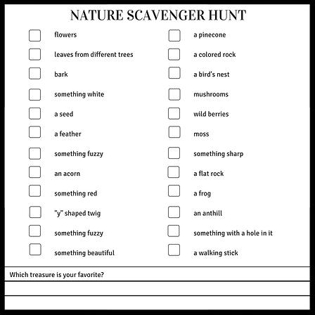 naturehunt.png