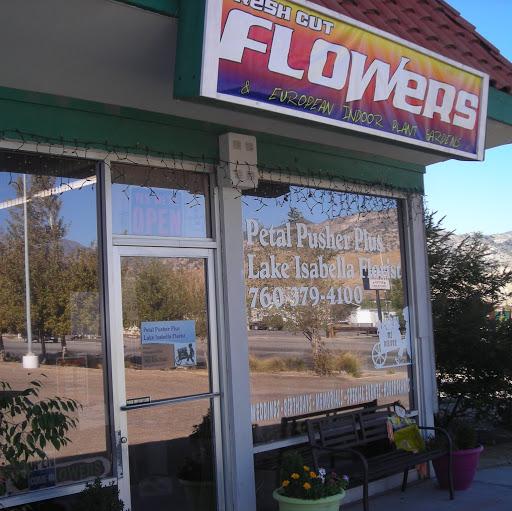 Petal Pushers Plus