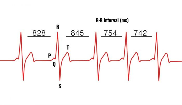 Heart rate variability. Athletic health