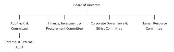 Board Governance Structure.png