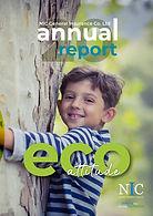 NICG - ANNUAL REPORT 2020 - 04 12 2020_f