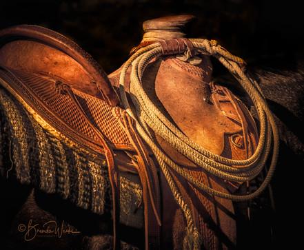 Golden Saddle