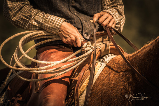 Ready to Rope