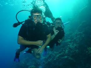 Cómo conocí a Nefertiti (VII). Siete metros de viaje submarino.