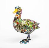 #1 Duck.jpg