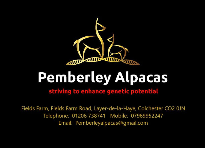 Logo address.jpg