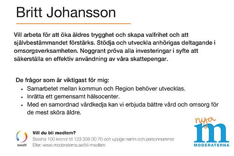Skärmklipp_Britt_Johansson_2.PNG
