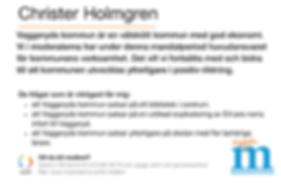 Christer Holmgren 2.PNG