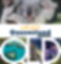 LETS-GO_QLD-web.jpg