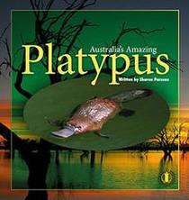 8-Platypus_medium.jpg