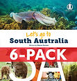 SA_6-pack.jpg
