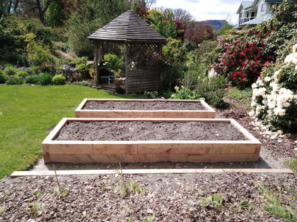 macrocarpa veggie beds.jpg
