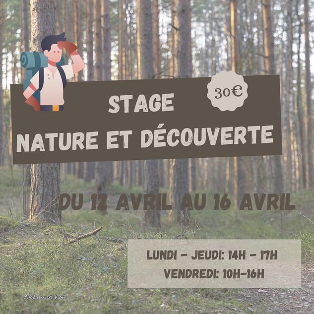 Stage Nature et Découverte